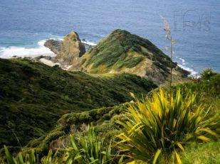 Cape Reinga scene